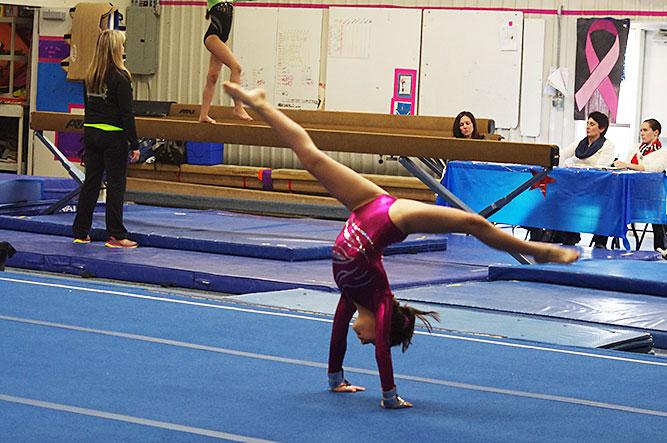 Albuquerque To Santa Fe >> Zia Gymnastics